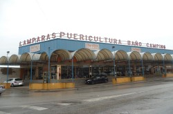 Puericultura-Galvez-2-1-250x165 Puericultura Gálvez