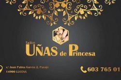 1464259316_Uñas_de_Princesa_Logo-250x165 Uñas de Princesa