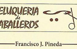 1465926061_Peluqueria_Francisco_J_Pineda_Logo-250x161 Peluquería Francisco