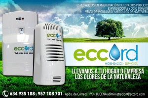 Eccord - Productos